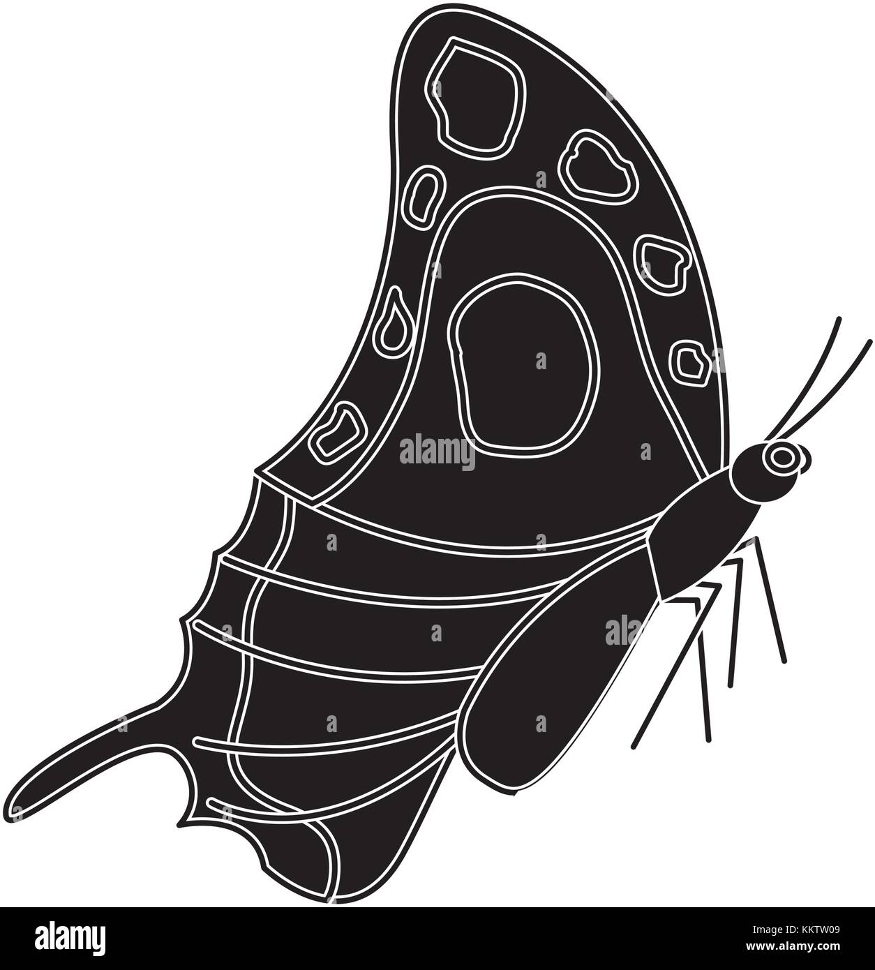 Schmetterling Insekten Käfer Seitenansicht icon image Stockbild