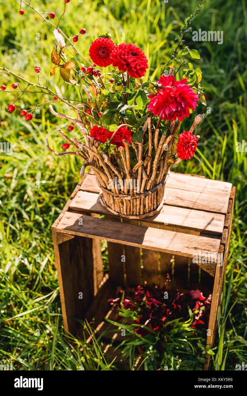 Garten Holzkiste Blumenvase Herbstliche Dekoration Stockfoto