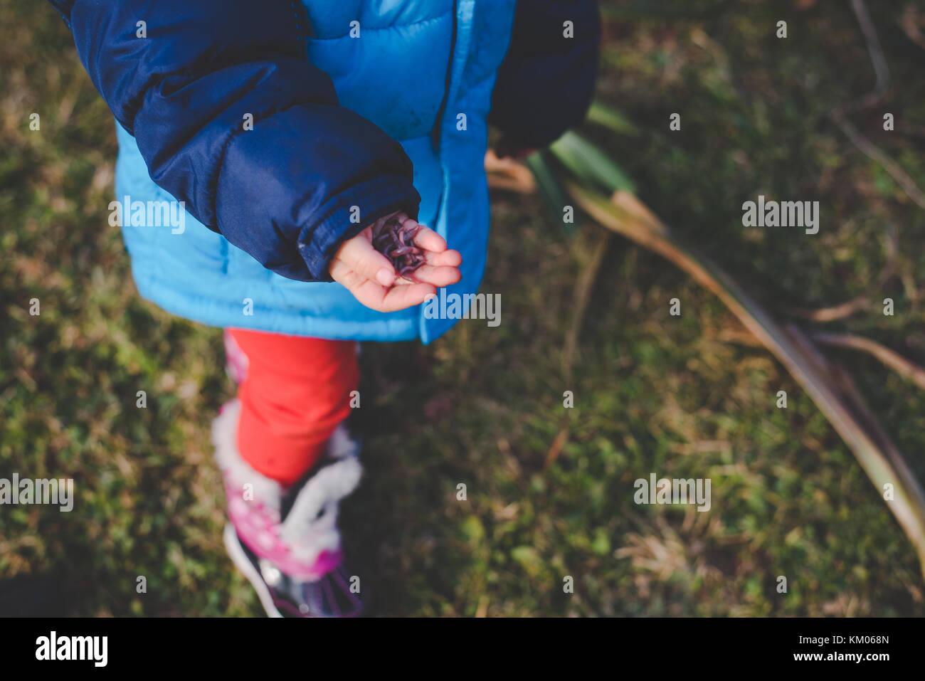 Ein kleines Mädchen, dass Regenwürmer in ihren Händen. Stockbild