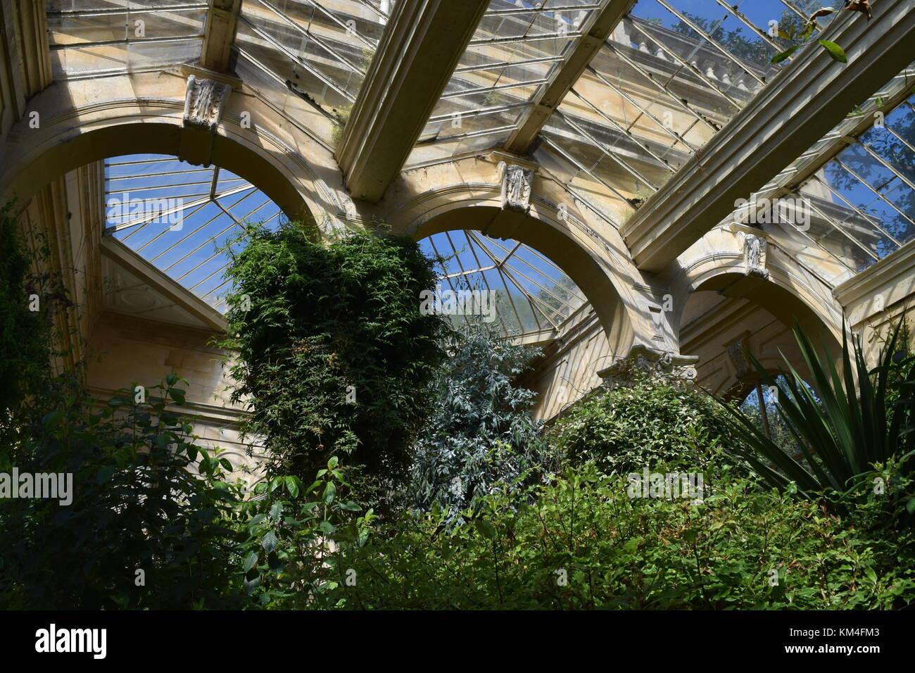 blick auf dach und pflanzen im gr nen haus in castle ashby. Black Bedroom Furniture Sets. Home Design Ideas