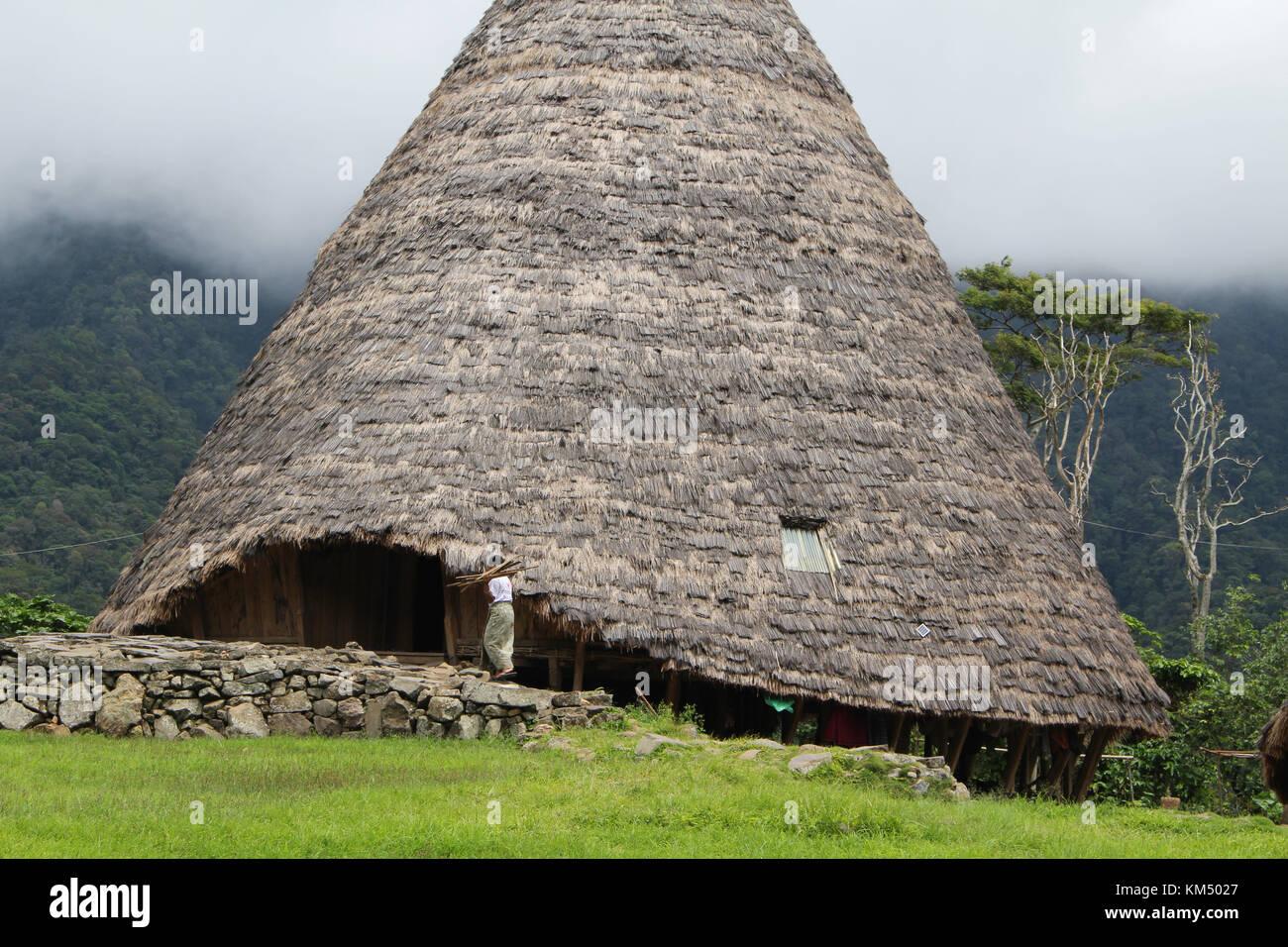 Eine einzige Hütte in wae Rebo traditionelles Dorf in Indonesien. Diese massiven Hütten werden von den Stockbild
