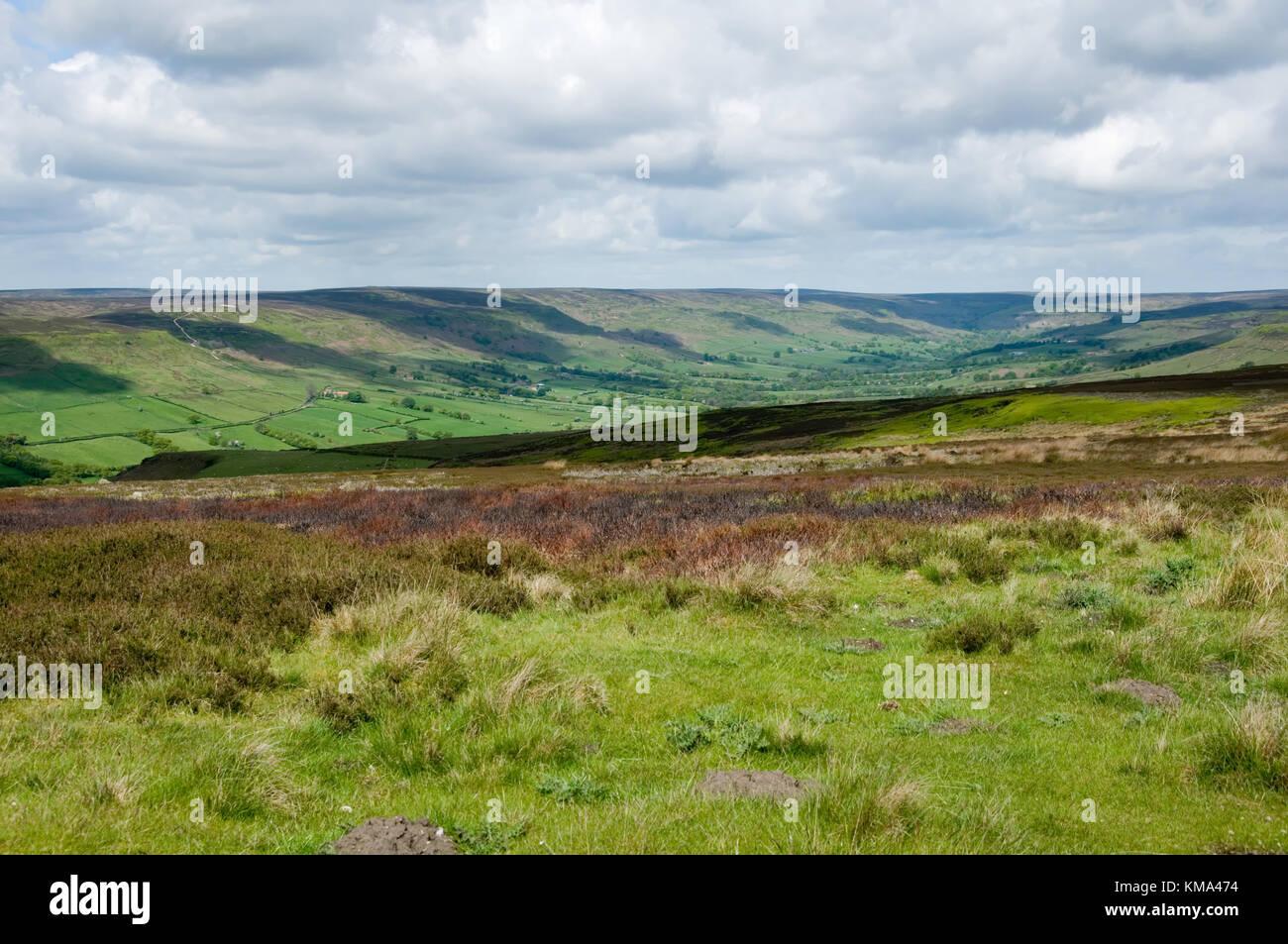 North Yorkshire Moors Wildnis Yorkshire Landschaft Heather Stockfoto