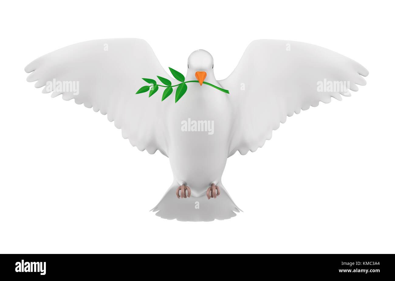 Taube des Friedens isoliert Stockbild