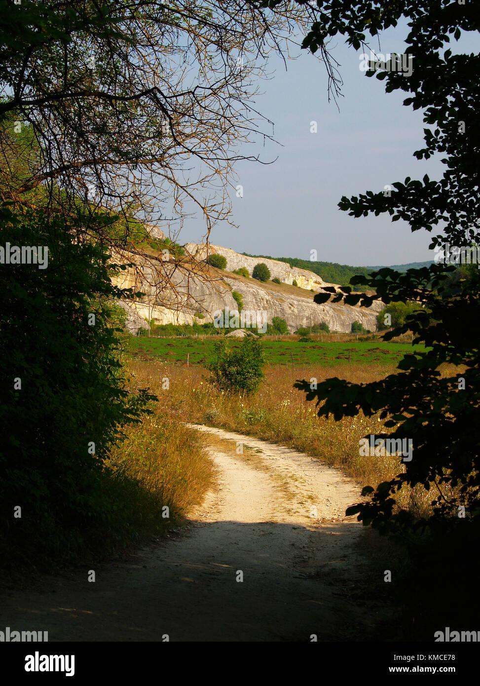 Land Straße in den Bergen, im Vordergrund silkets von Bäumen und weiter geht der Pfad in die Sonne im Stockbild