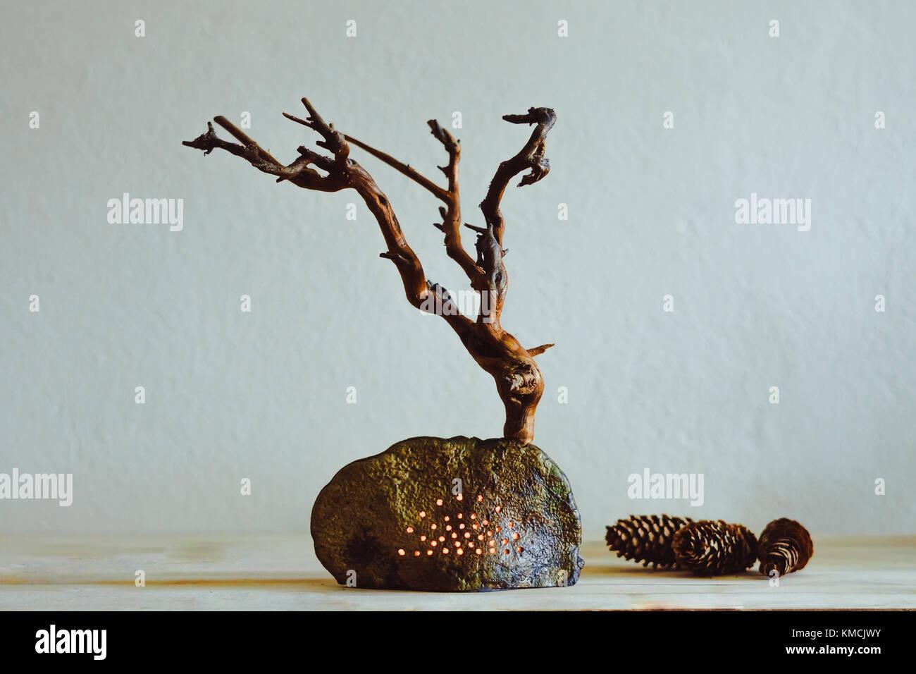 getrocknete baum mit wurzeln auf den tisch als deko stockfoto bild 167464695 alamy. Black Bedroom Furniture Sets. Home Design Ideas
