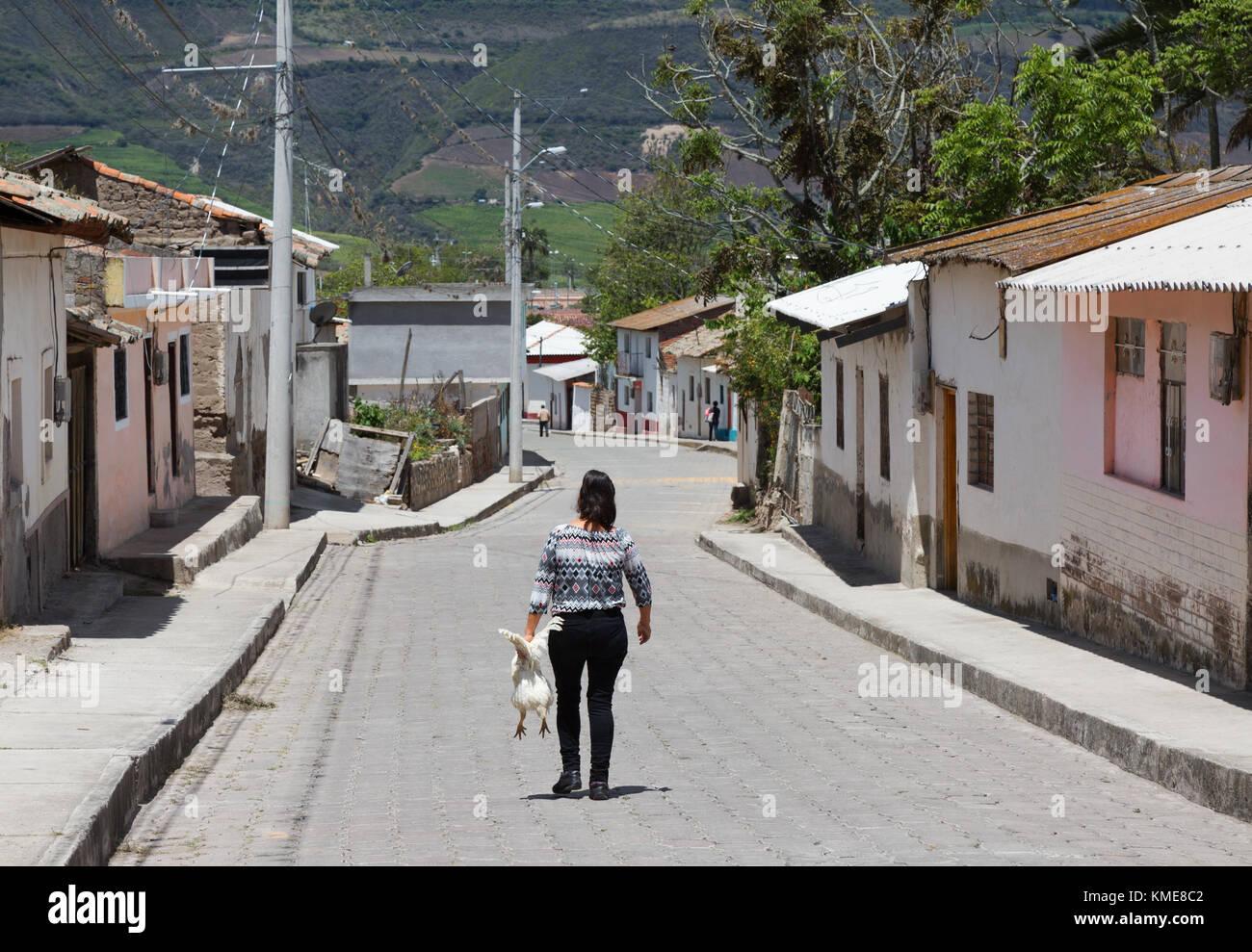 Ecuador village Szene; Frau, die Hähnchen von zurück, Tumbabiro, Nördlichen Ecuador Südamerika Stockbild