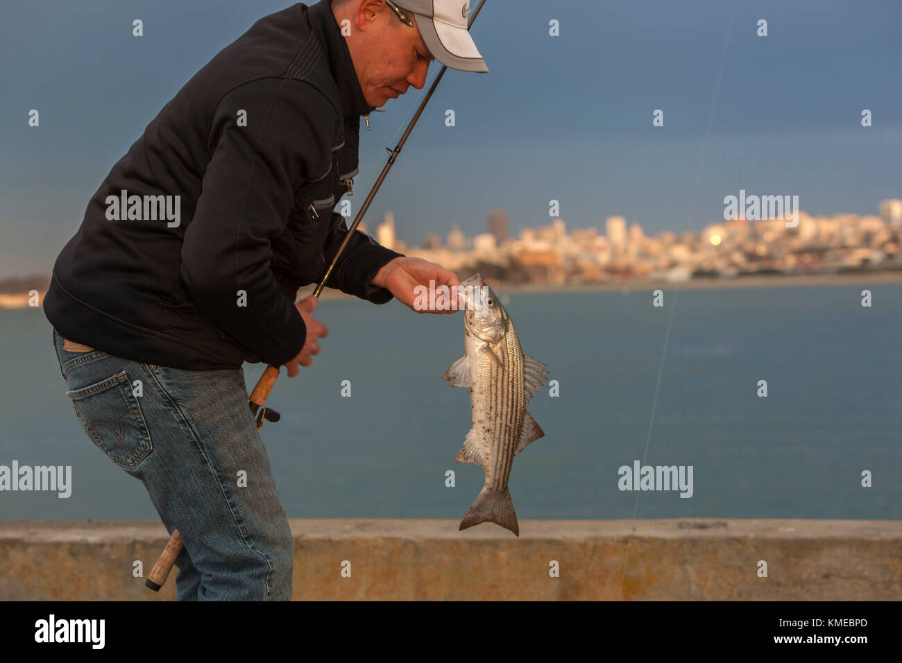 Fischer Holding gefangen Striped Bass (morone Saxatilis), Golden Gate pier, San Francisco, Kalifornien, USA Stockfoto