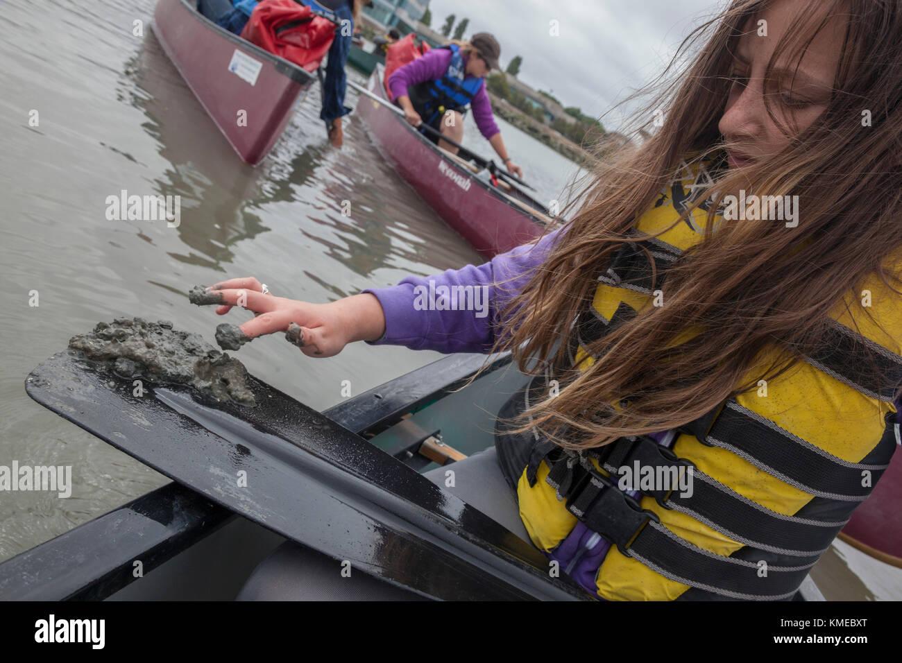Kanus in sloughs Environmental Education Programm durch das Institut für Meereswissenschaften, Redwood City, Stockbild