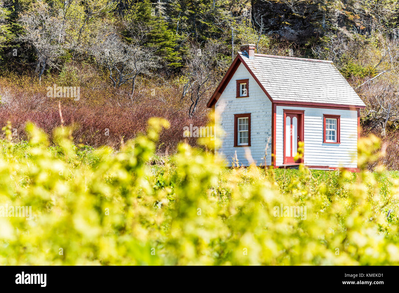 Alte Vintage White Und Roten Holzhaus Landhaus Auf Einem Hügel In  Idyllischer Landschaft, Garten Im