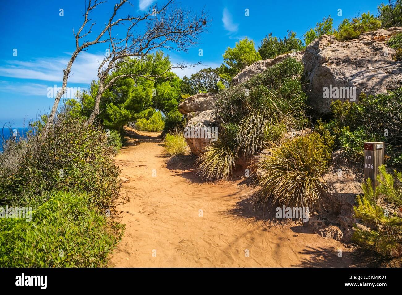 Cami de Cavalls weg. Weg zur Cala Pilar Beach. Ciutadella de Menorca Gemeinde. Menorca. Balearen. Spanien Stockbild