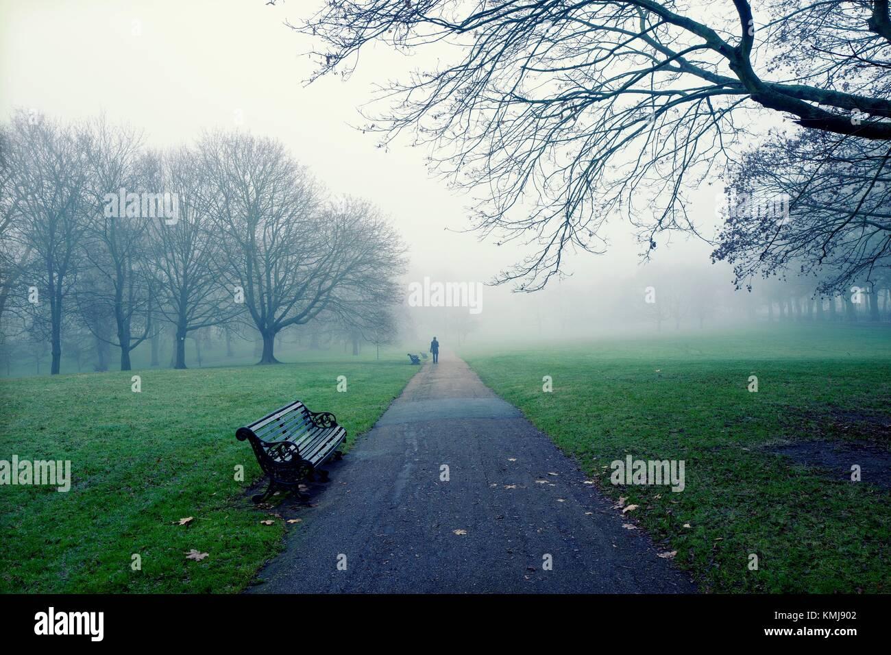 Ansicht der Rückseite des unkenntlich Mann zu Fuß durch den Park an einem nebligen Morgen. Die Green Park, London, Stockfoto