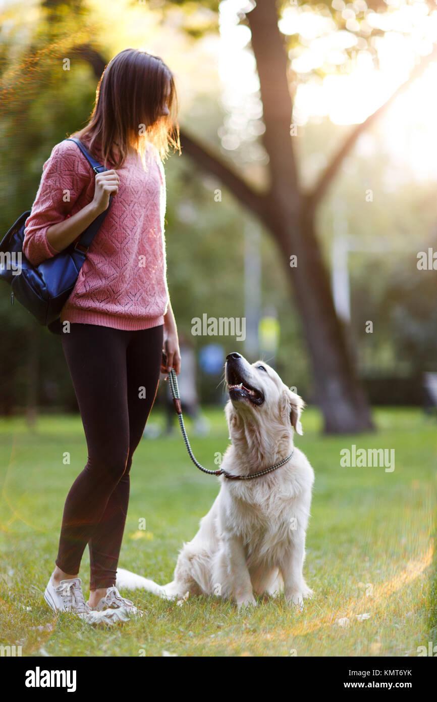 Bild der jungen Frau zu Fuß mit Retriever im Sommer Park Stockbild