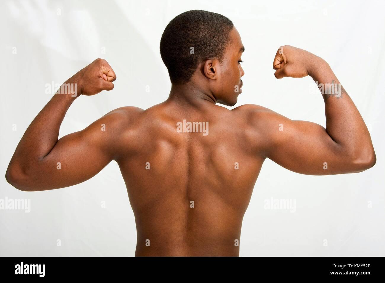 Back Muscle Stockfotos & Back Muscle Bilder - Alamy