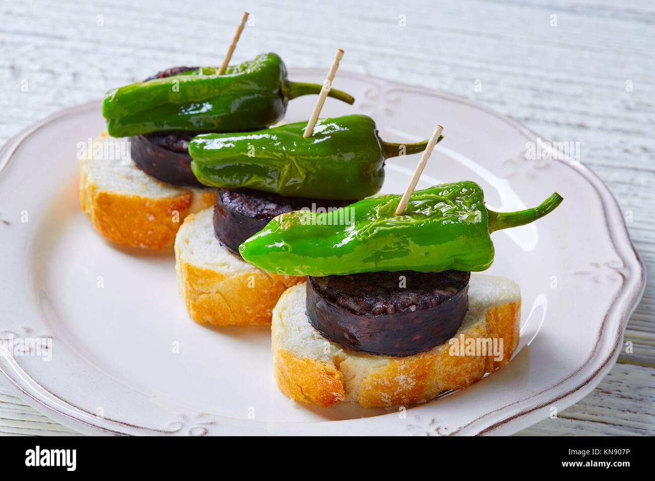 Pinchos Burgos morcilla mit padron Pfeffer tapas Pinchos aus Spanien essen. Stockbild