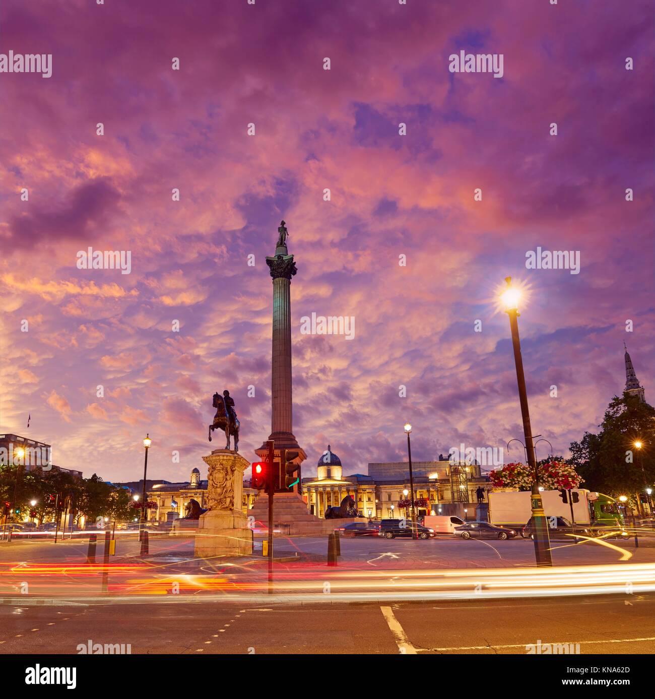 London Trafalgar Square sunset Nelson Spalte in England. Stockbild
