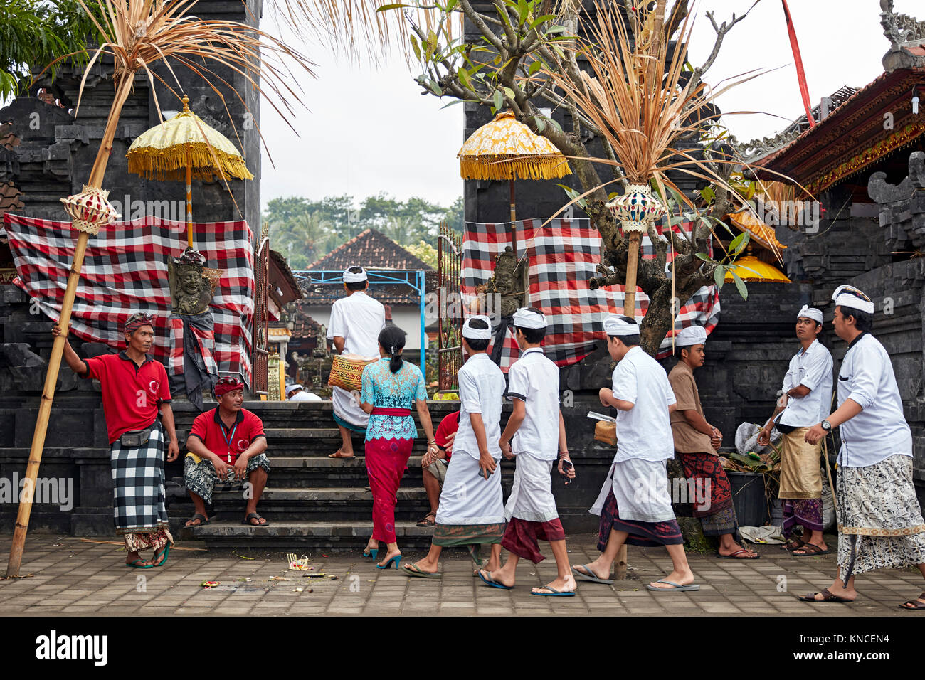 Bali indonesien frauen suchen männer