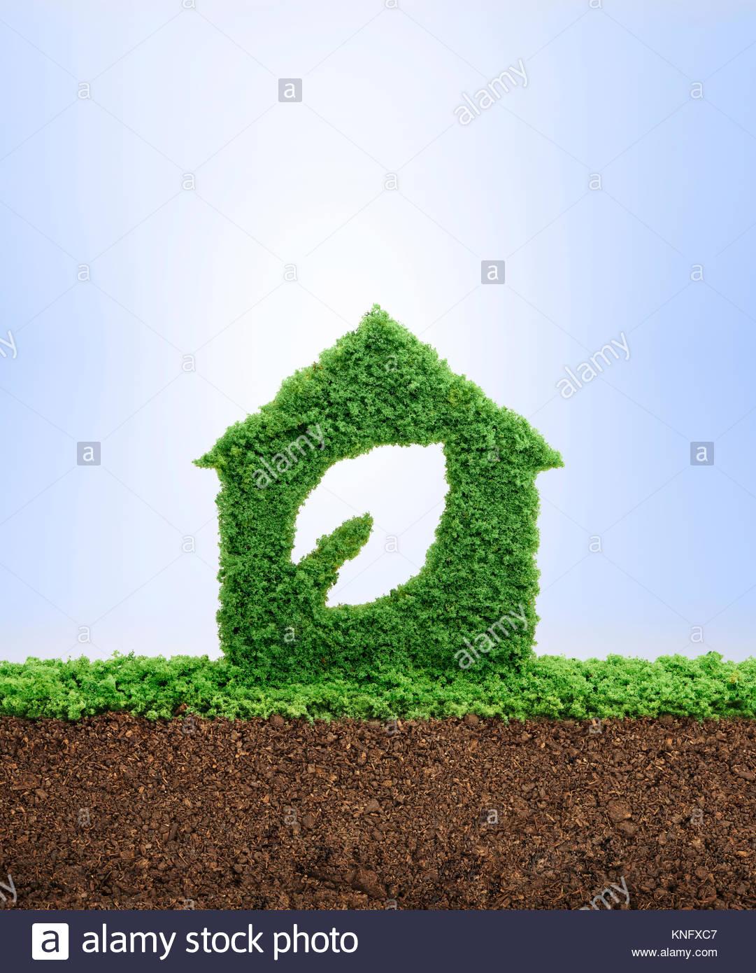 Die Natur ist Home Konzept. Bauen Nachhaltige Wohnungen und die Umwelt zu schützen. Gras wächst in der Stockbild