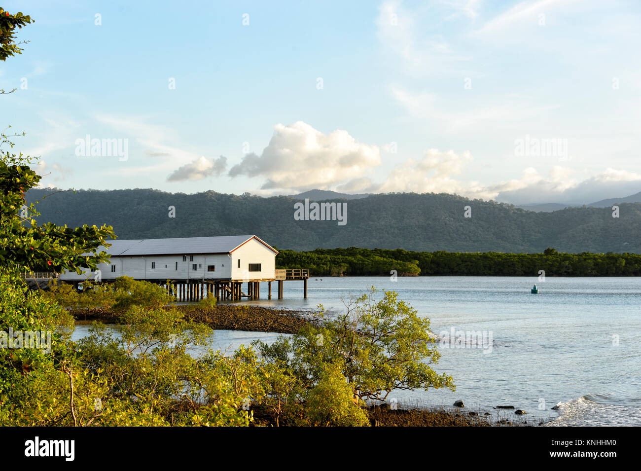 Historische Zucker Wharf, Dickson Einlass, Port Douglas, Far North Queensland, FNQ, QLD, Australien Stockbild
