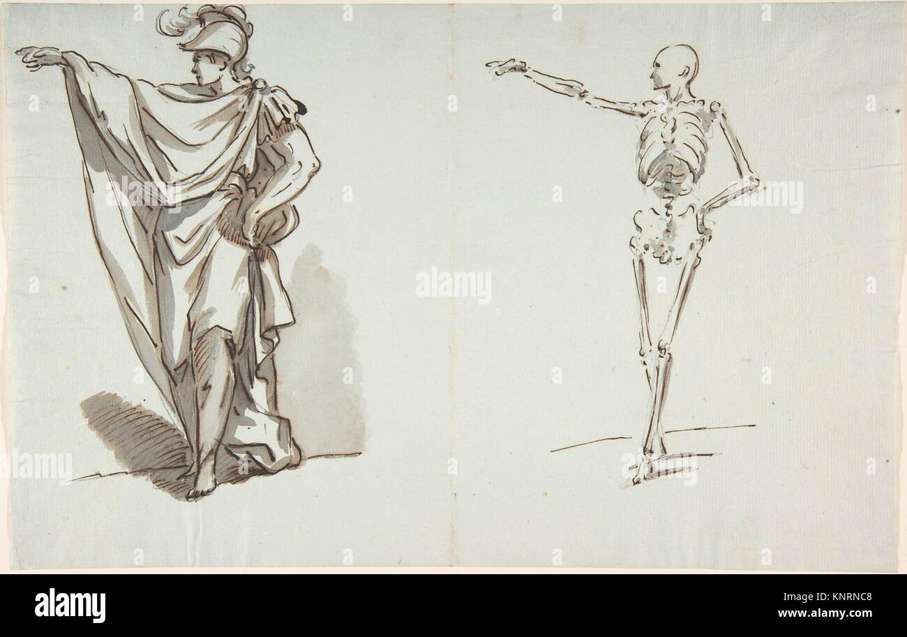 Anatomical Drawing Stockfotos & Anatomical Drawing Bilder - Alamy