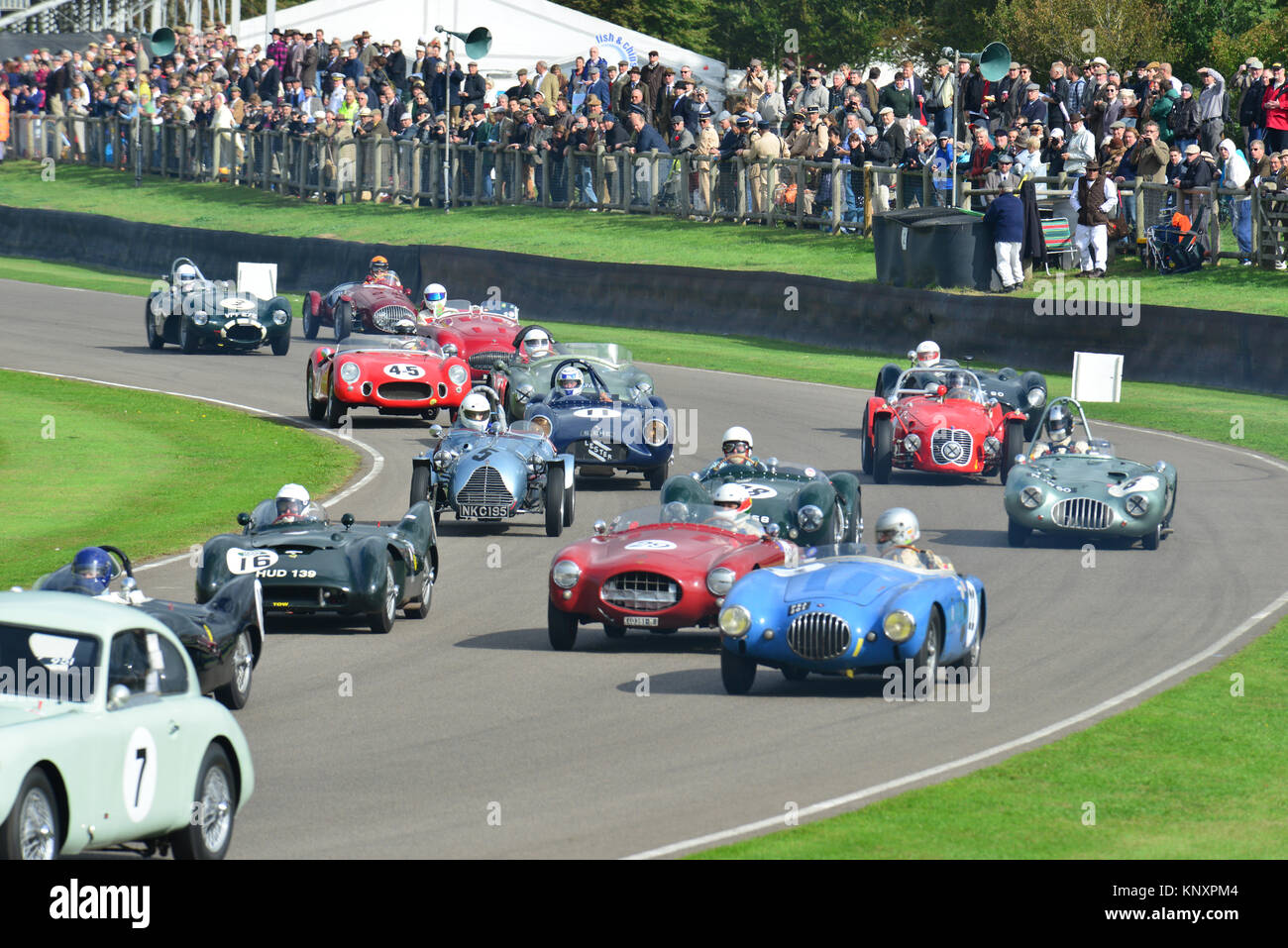 In Madgwick, madgwick Schale, Goodwood Revival 2013 Stockbild