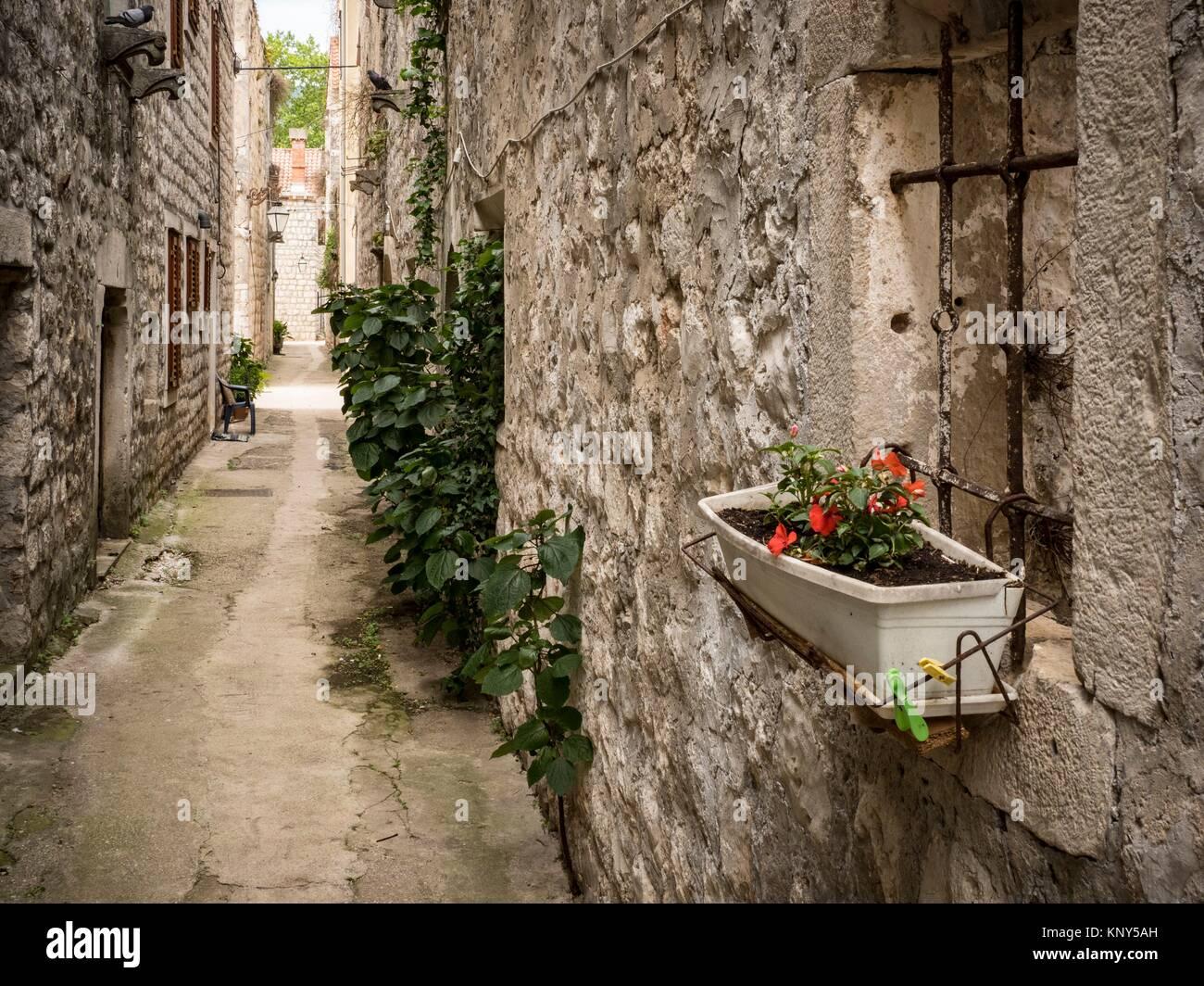 Ston Kroatien. Stockbild