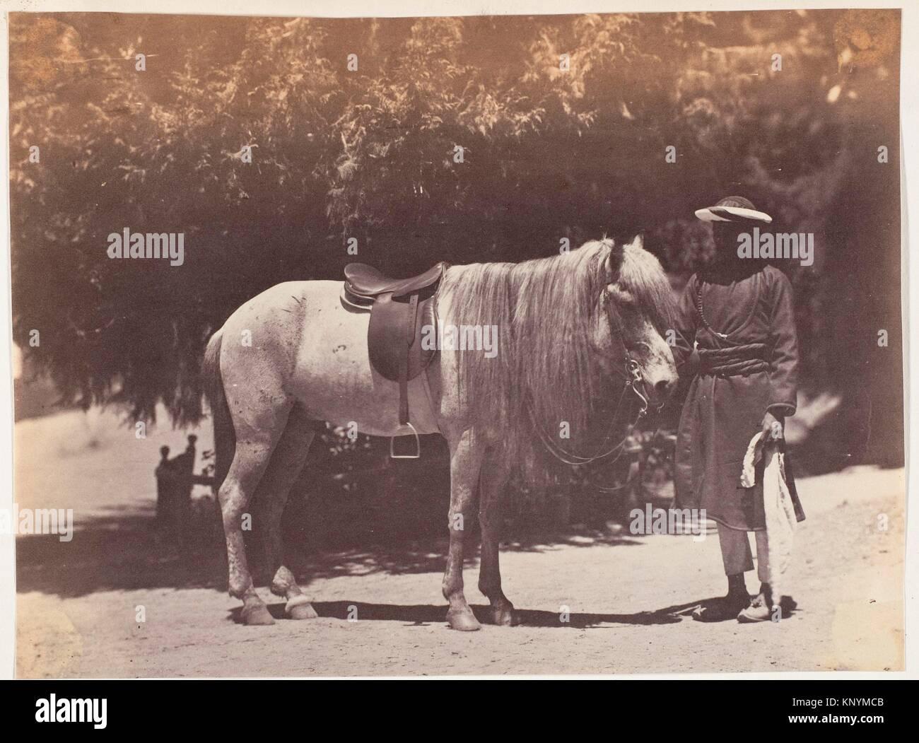 [Lord Canning Hill Pony]. Artist: Unbekannt; Datum: 1858-61; Medium: Eiweiß Silber drucken; Abmessungen: Bild: Stockbild