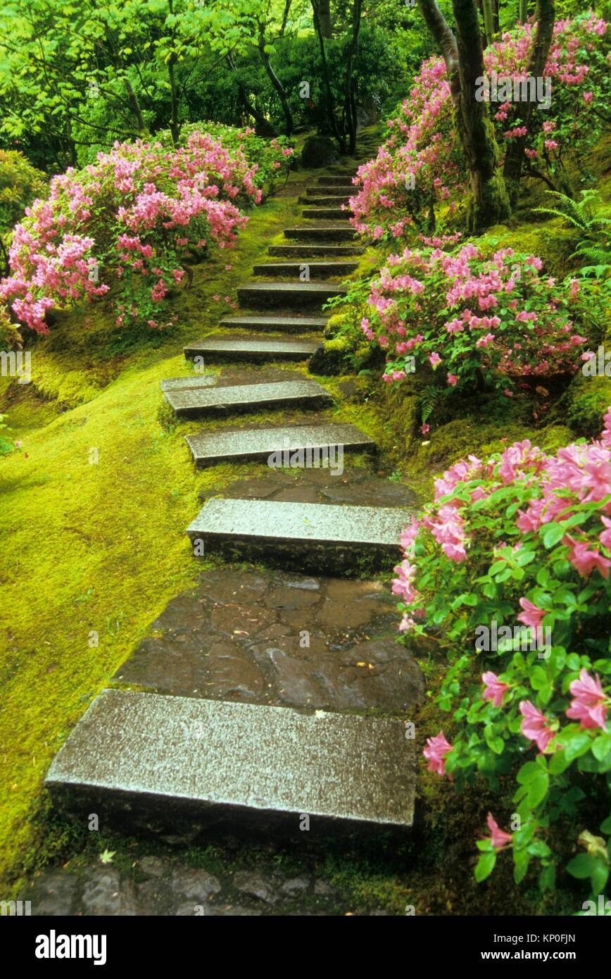 natürlichen garten treppe, portland japanese garden, washington park