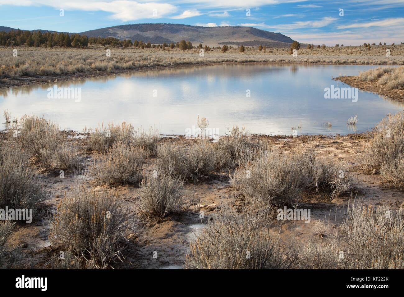 Steens See, Sand hohle Wüste Studie, Prineville Bezirk Büro des Land-Managements, Oregon. Stockbild