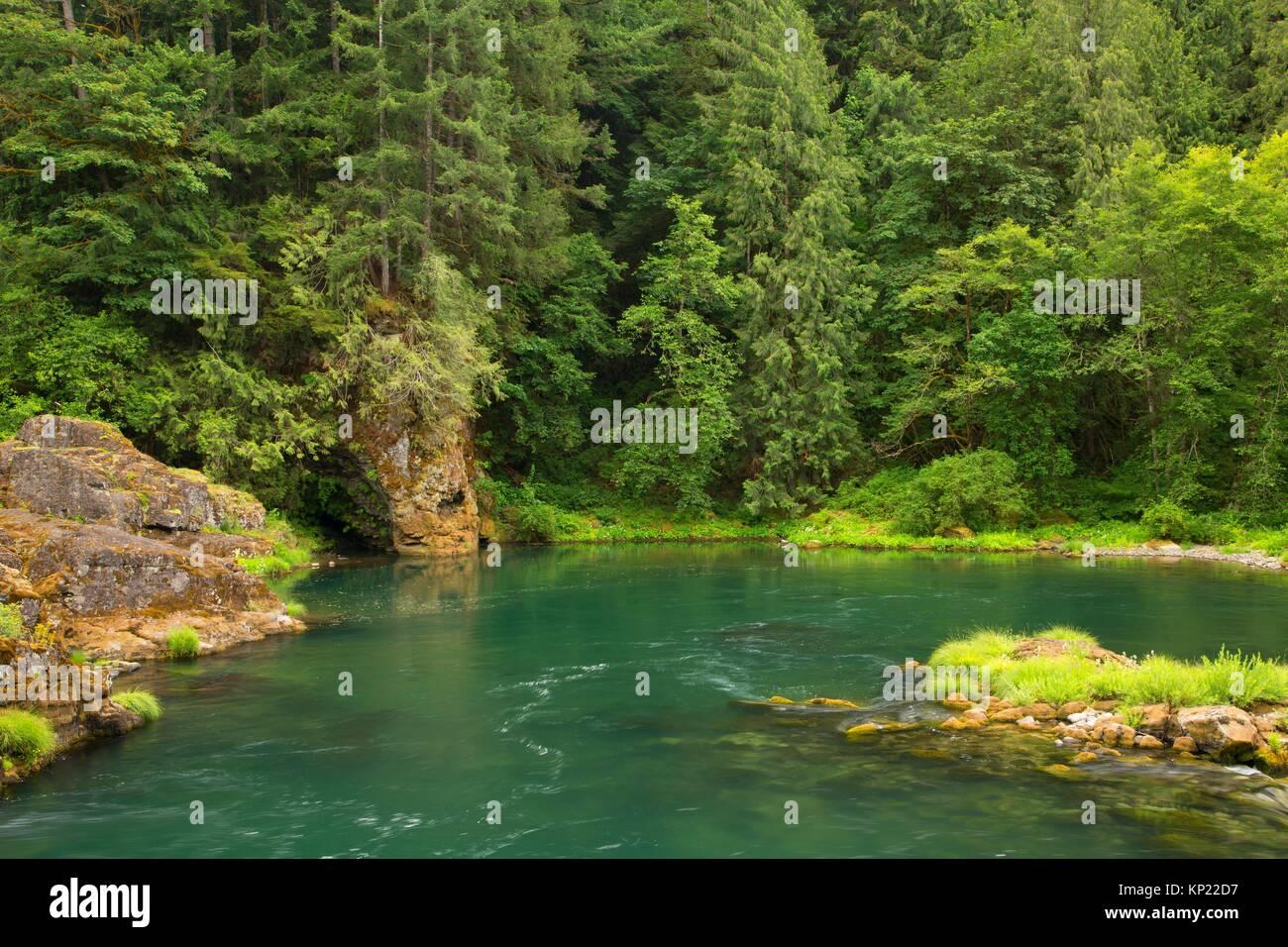 Norden Santiam Fluß, Niagara County Park, Marion County, Oregon. Stockbild
