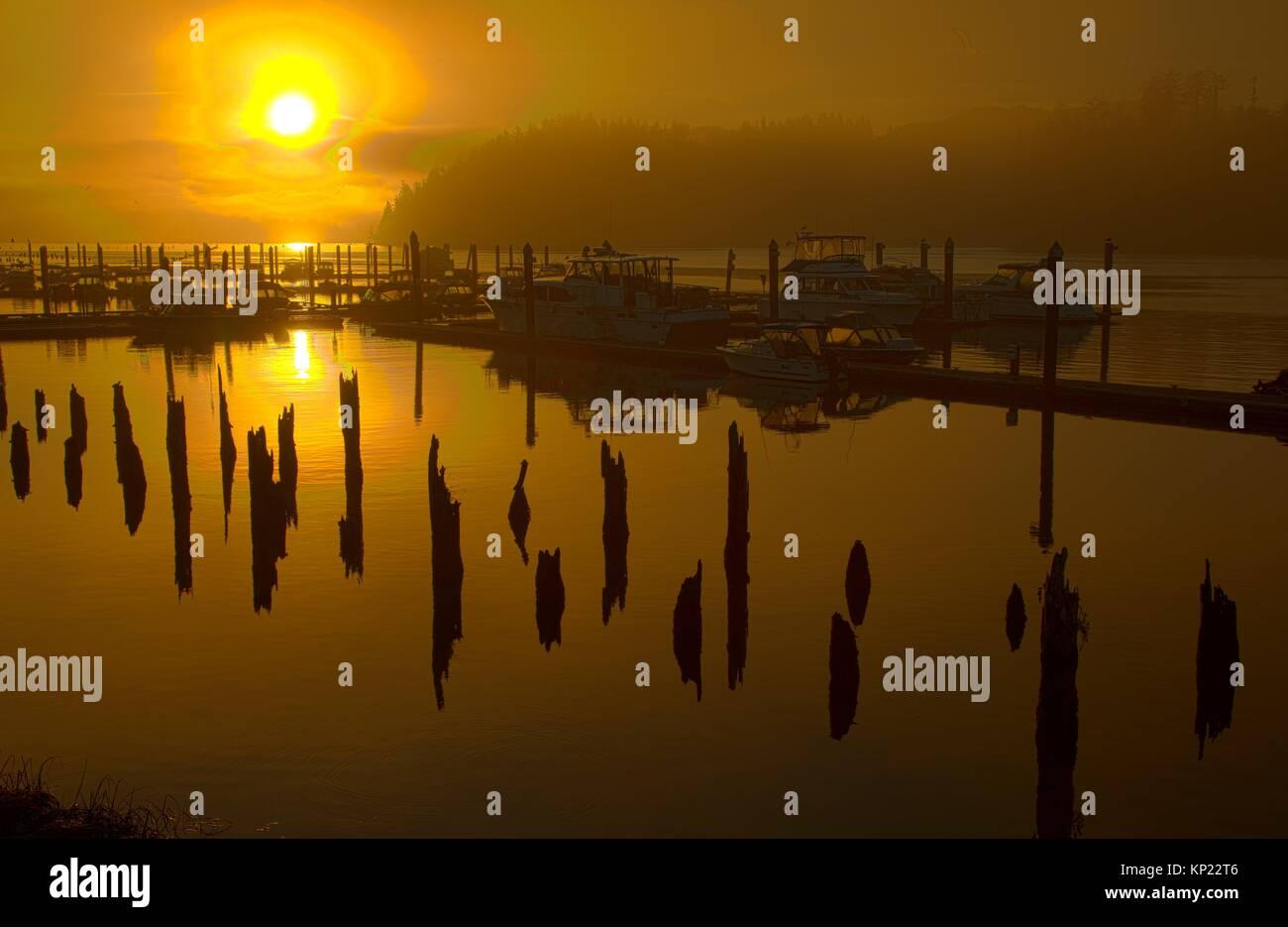 Marina sunrise, Florence, Oregon. Stockbild