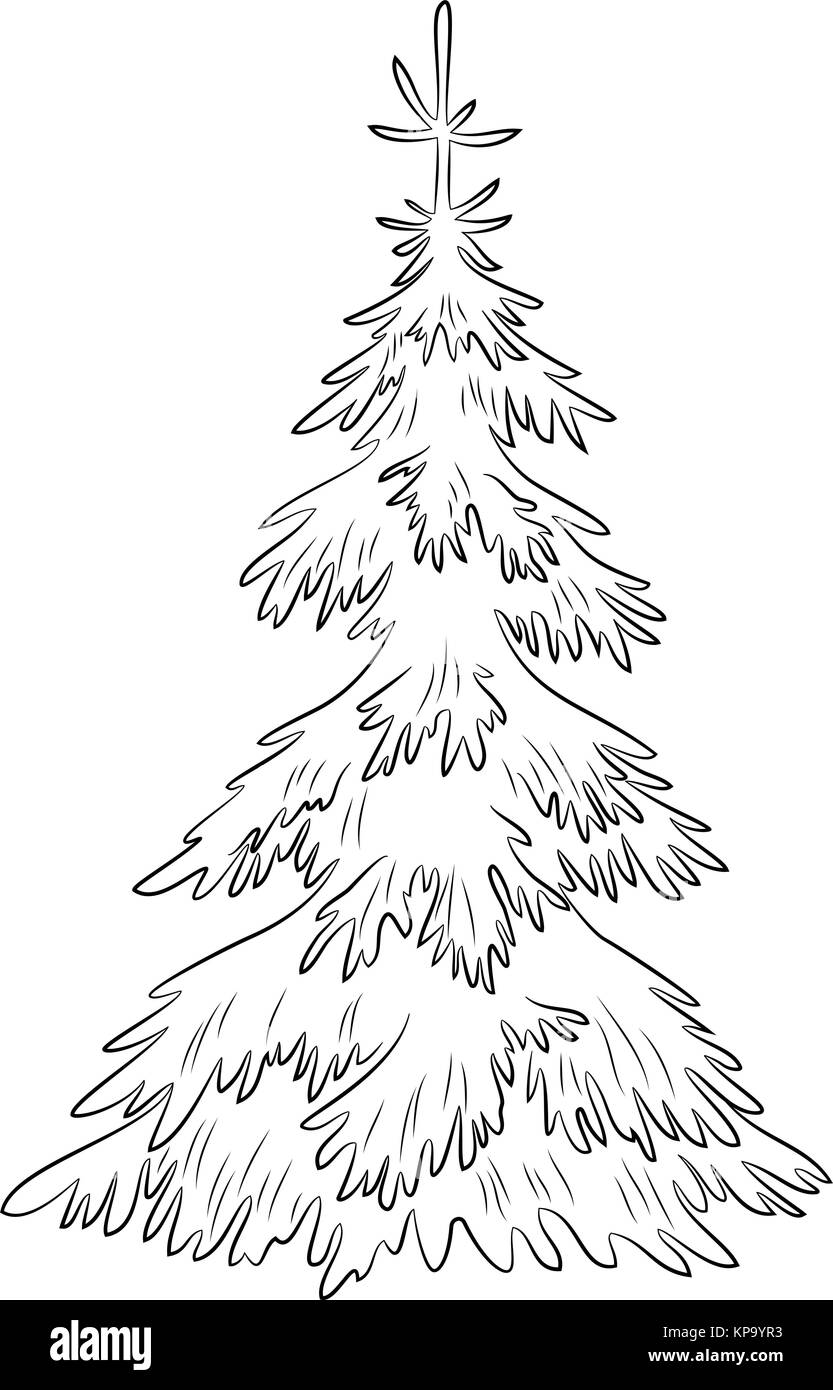 Tannenbaum Bilder.Weihnachten Tannenbaum Konturen Vektor Abbildung Bild 168635127