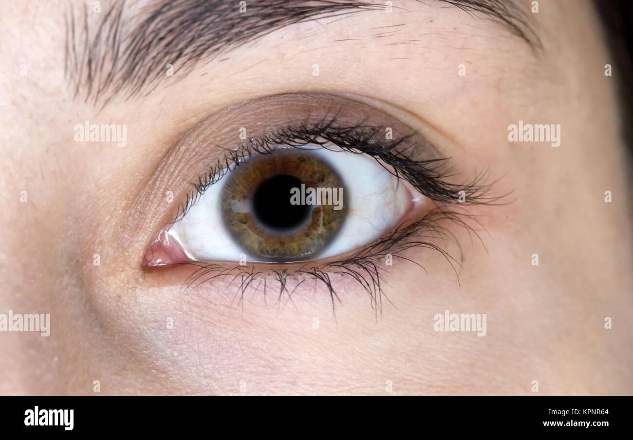 Model Release, Auge Einer Frau - Auge einer Frau Stockbild