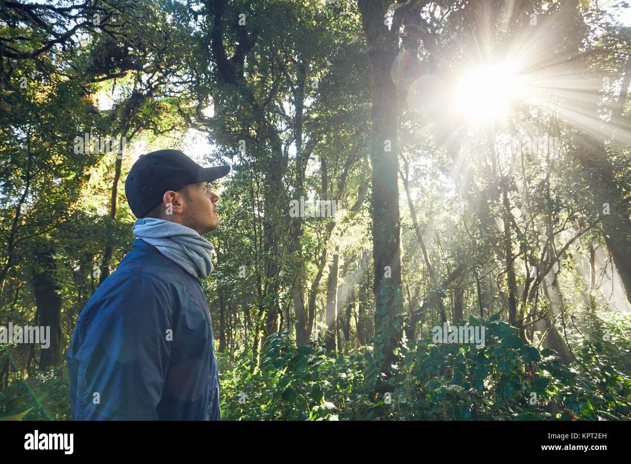 Wanderung bei Sonnenaufgang. Junger Mann (Reisenden) Wandern im tropischen Regenwald in Thailand Berge. Stockbild