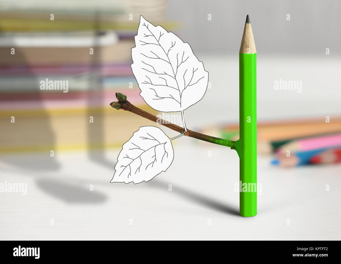 Kreative Idee, Konzept, Bleistift mit Blättern auf dem Tisch Stockbild
