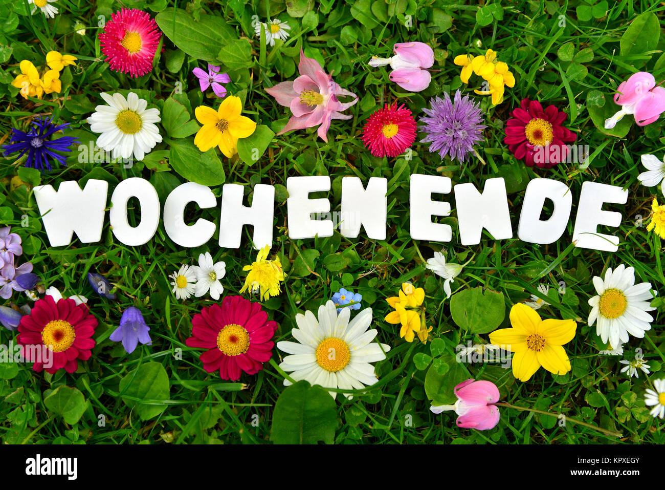 Schönes Wochenende Text Auf Blumenwiese Stockfoto Bild