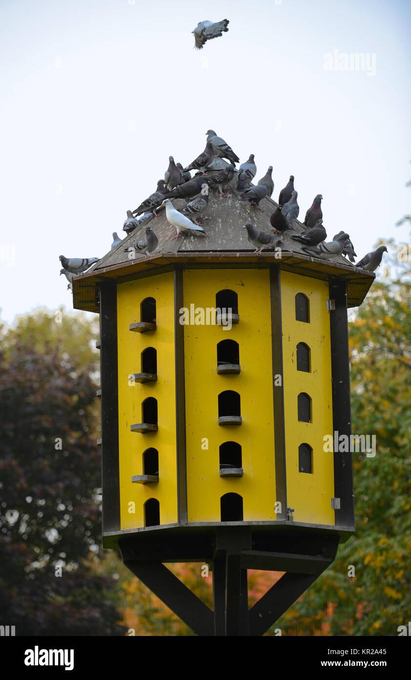Taubenschlag stadt garten dortmund nordrhein westfalen deutschland taubenhaus stadtgarten - Stadtgarten dortmund ...