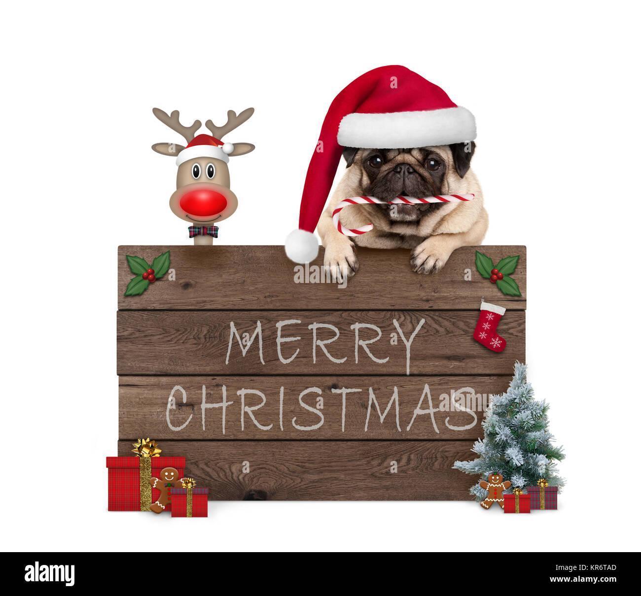 s e weihnachten mops welpen hund und rednosed reindeer. Black Bedroom Furniture Sets. Home Design Ideas