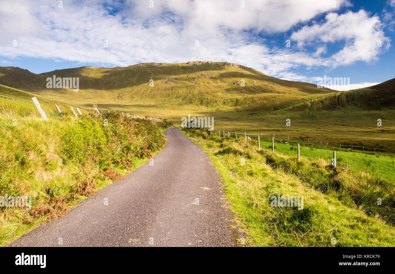 Ein schmaler Pass Straße steigt die Hänge des Caherconree, durch gree Weide, Felder, in der Slieve Mish Mountains Stockfoto