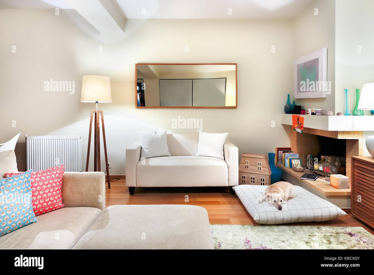 Ein Modernes Wohnzimmer Mit Zwei Sofas, Spiegel, Eine Große Lampe Und Ein  Hund Liegend Auf Einem Kissen, Künstliches Licht.