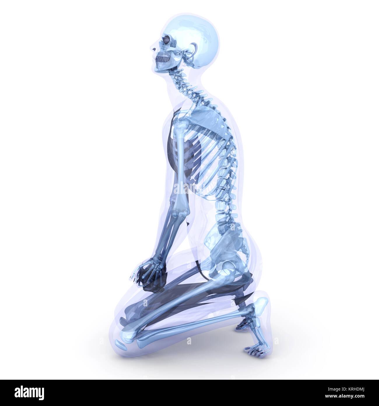 Männlich, menschliche, durchscheinenden Körper. Anatomie ...