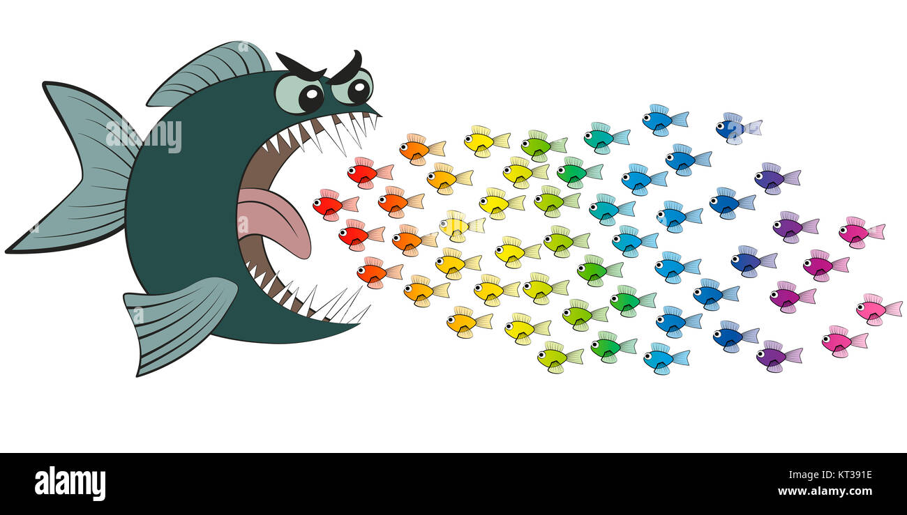 Gro e fisch essen viele bunte kleine fische unvorsichtig for Fische fur kleinen gartenteich