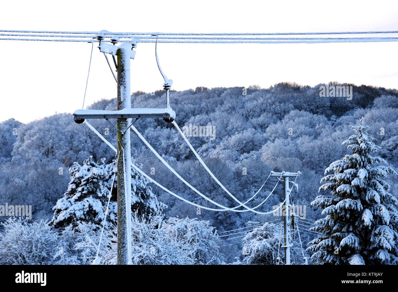 Overhead elektrische Stromleitungen in schweren Schnee 2017 abgedeckt Stockbild