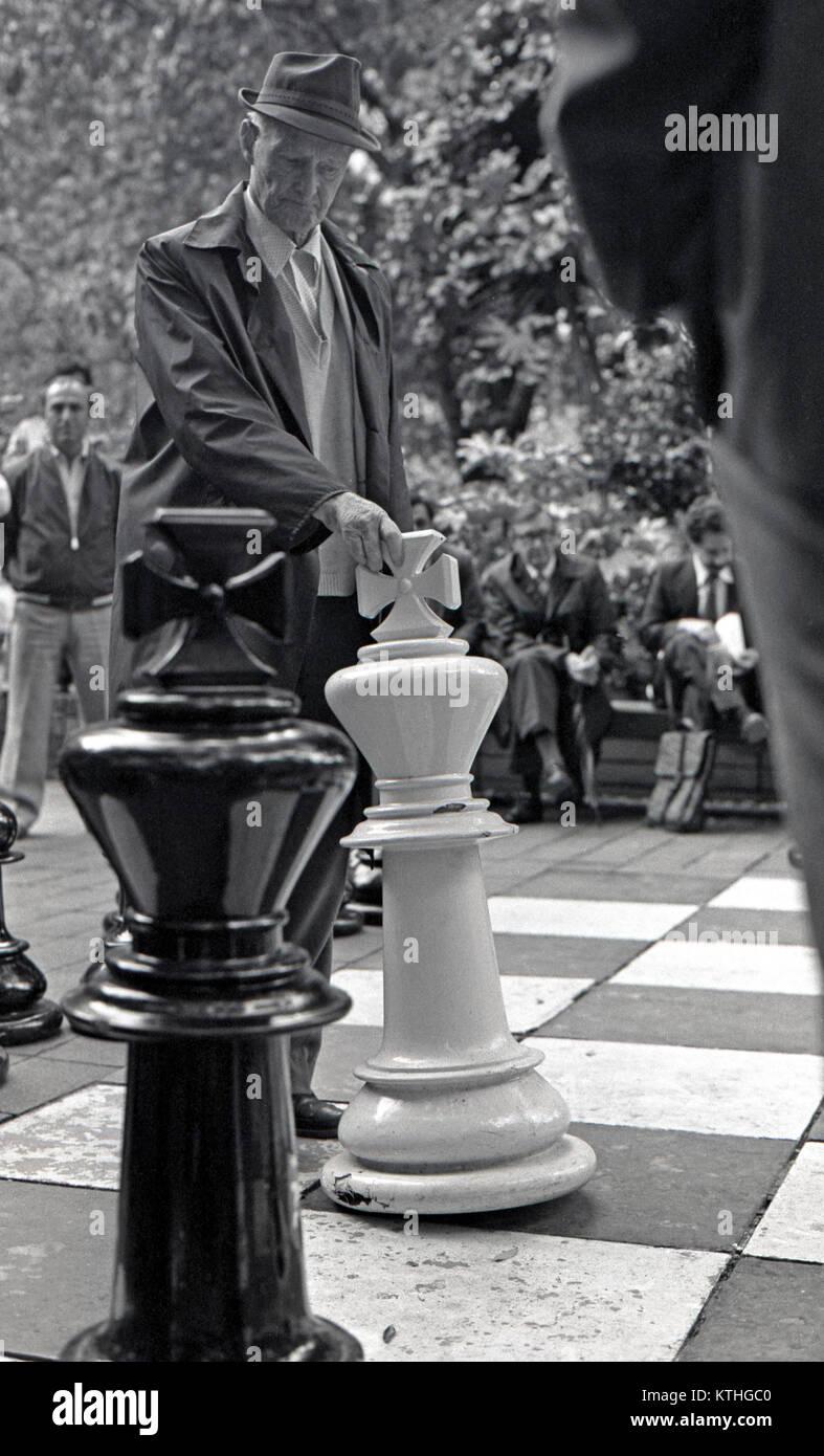 Männer spielen Schach, Sydney, Australien Stockbild