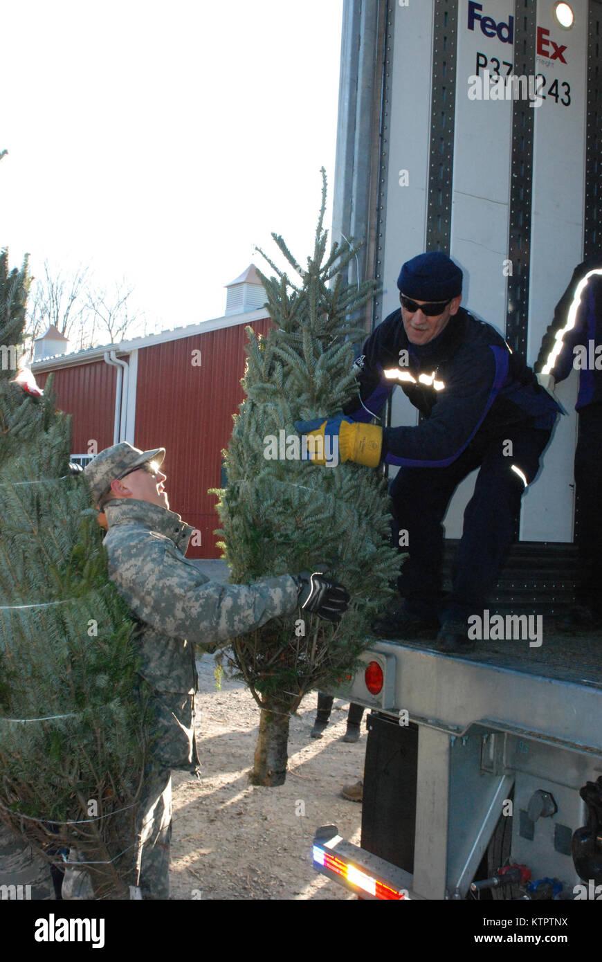 FedEx Fahrer Don Pelletier Aufzüge eine gespendete Weihnachtsbaum auf sein Fahrzeug während des Ladens Stockbild
