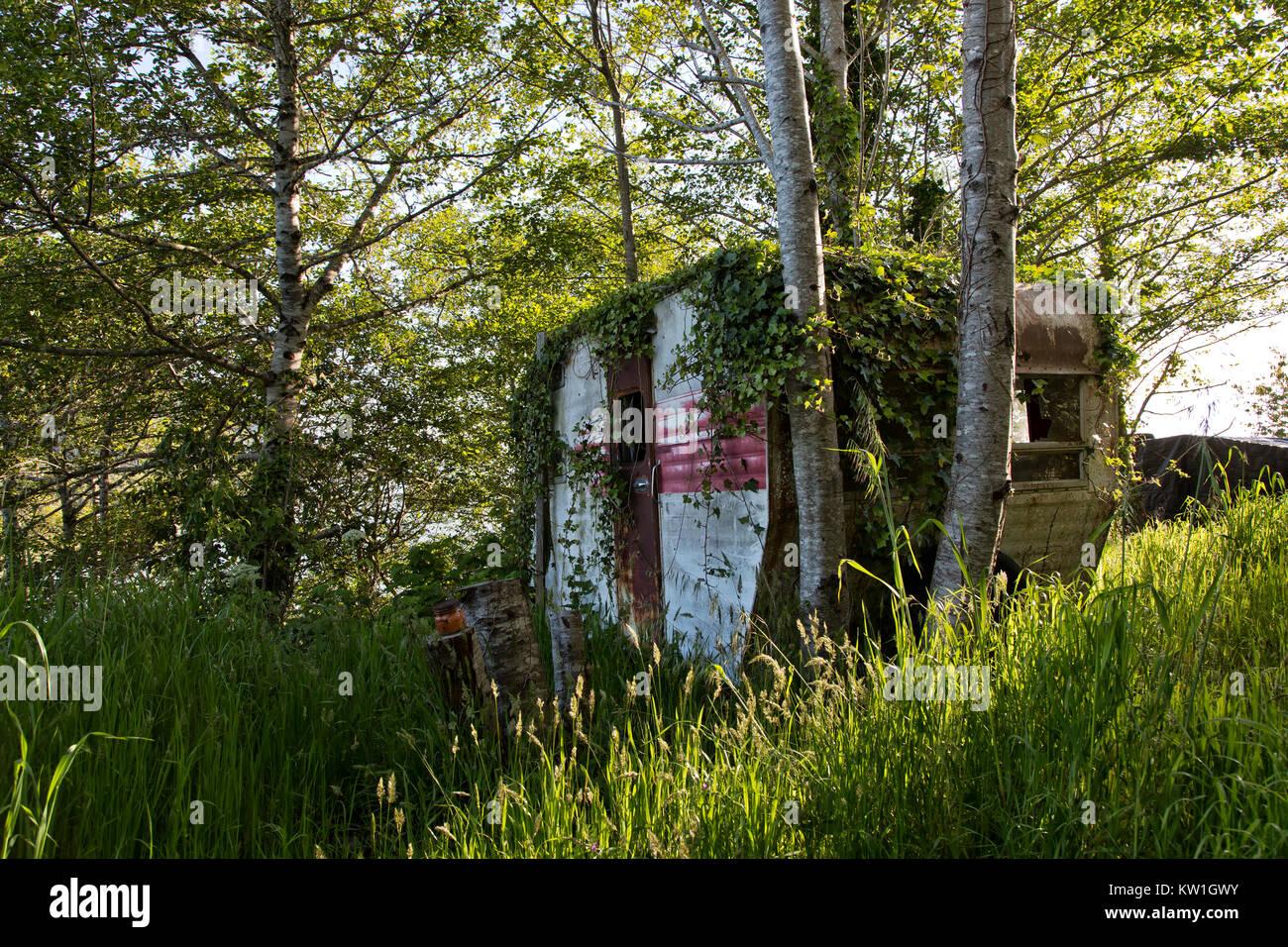 Vintage Travel Trailer Tour - A - Home, Rast unter einem Hain von Erlen, zeigt viele Jahre Einsatz, zurückgehend Stockbild