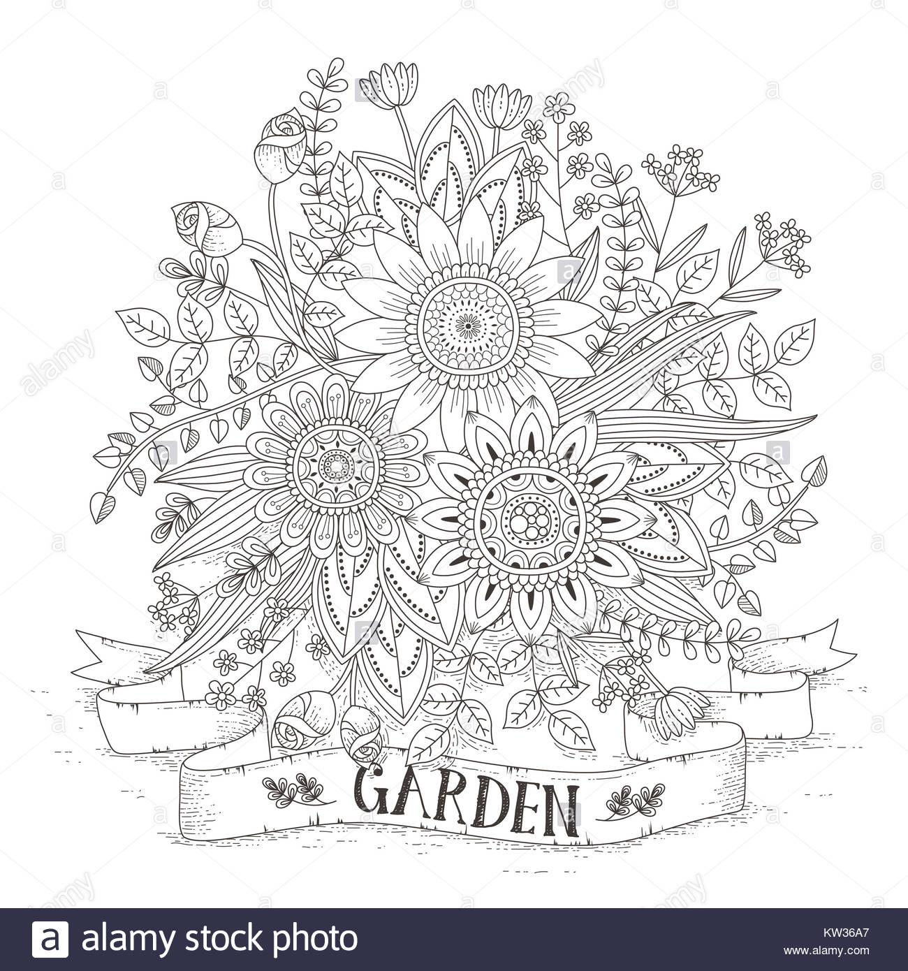 Black Vector Outline Rose Flower Stockfotos & Black Vector Outline ...