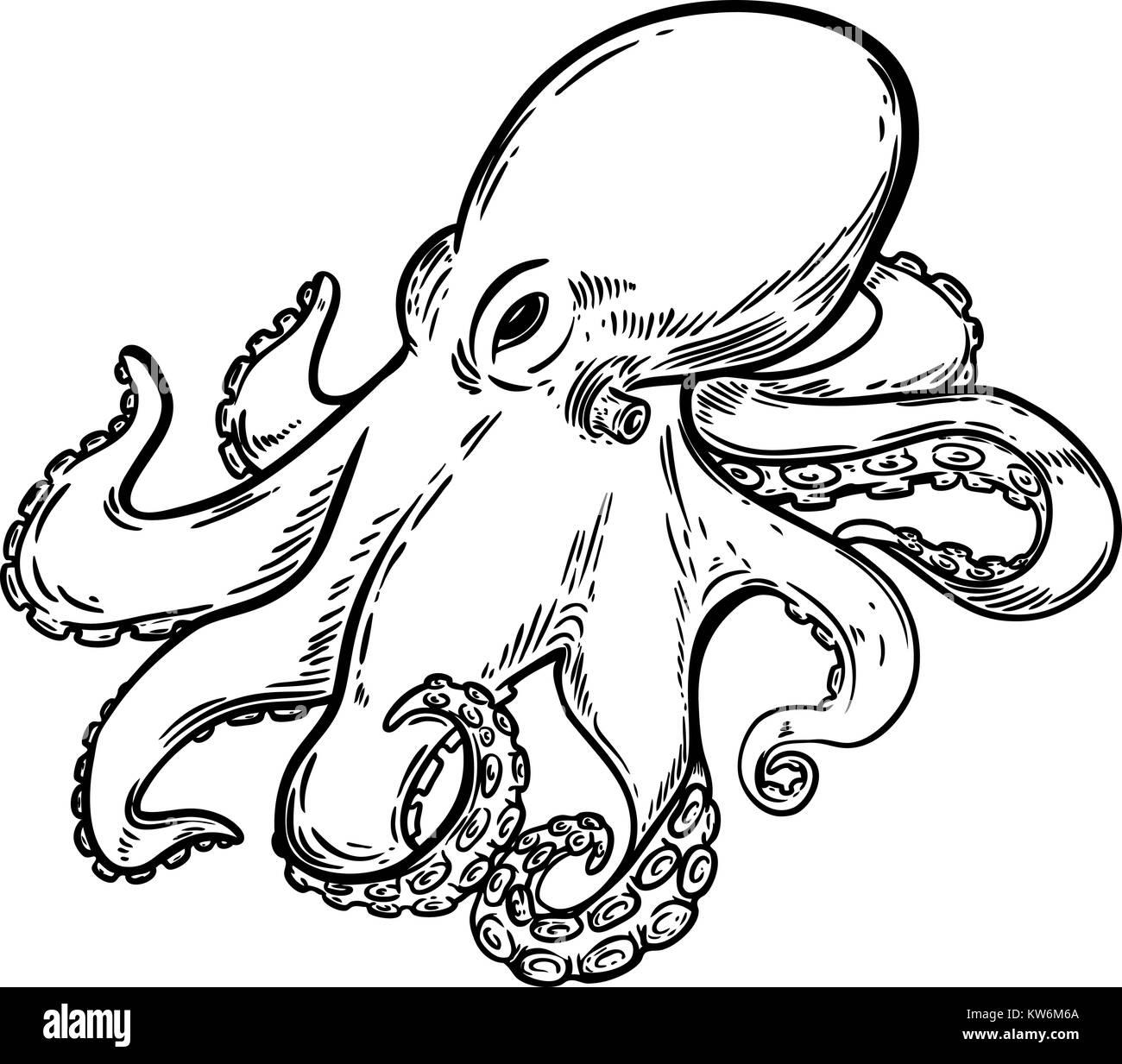 octopus illustration stockfotos  octopus illustration