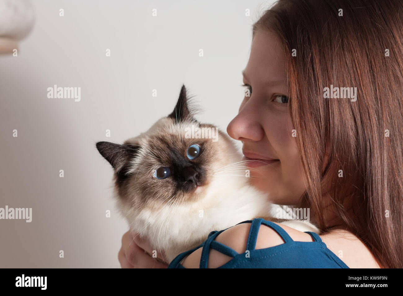 Katze Macht Buckel Und Läuft Seitlich