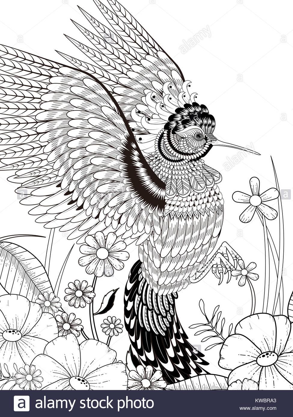 Atemberaubend Kolibri Malvorlagen Zum Ausdrucken Bilder ...