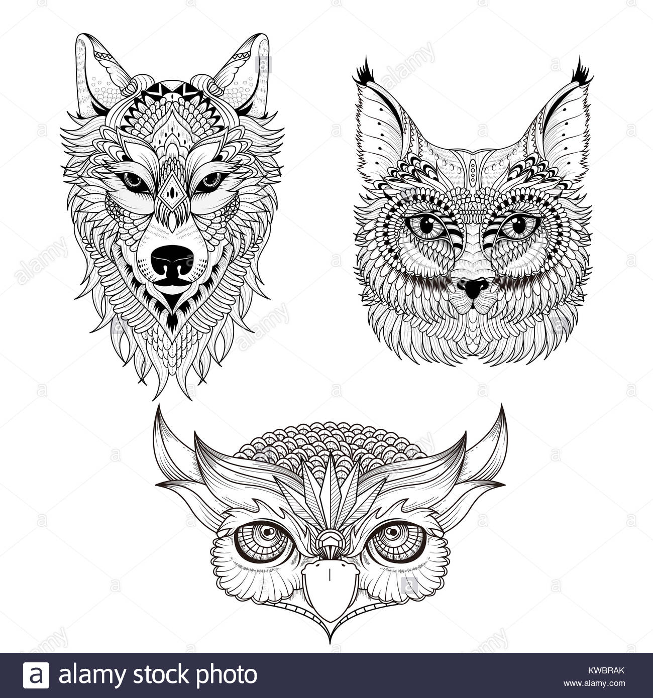 Wolf Head Isolated In White Stockfotos & Wolf Head Isolated In White ...